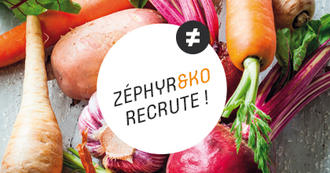 recrutement zephyr and ko